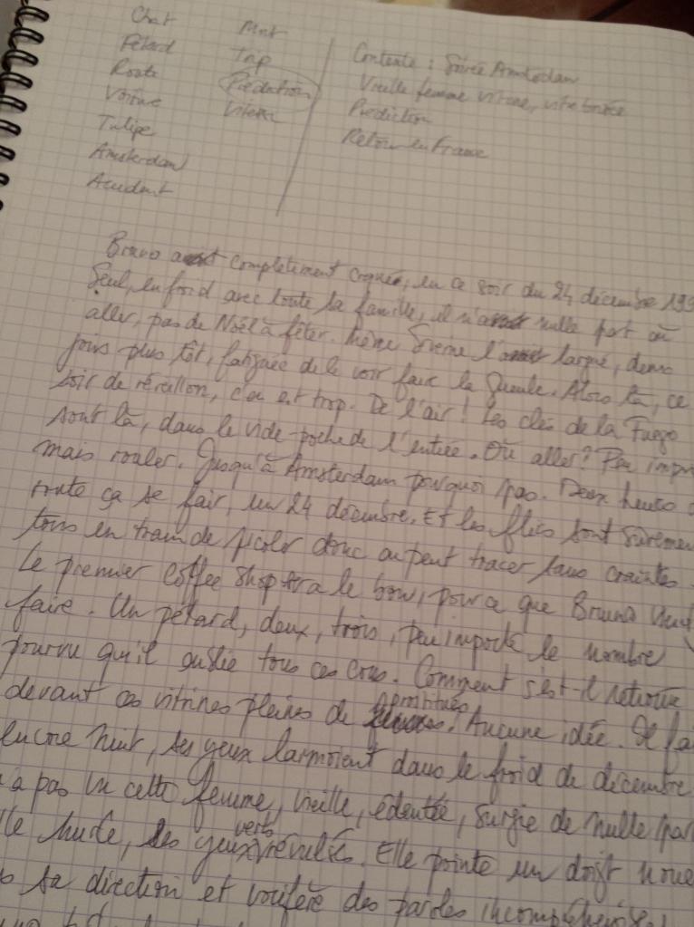 Making-of : mon brainstorming du dessin puis mon texte (incomplet, vous ne saurez jamais la fin ! mouhahaha... )