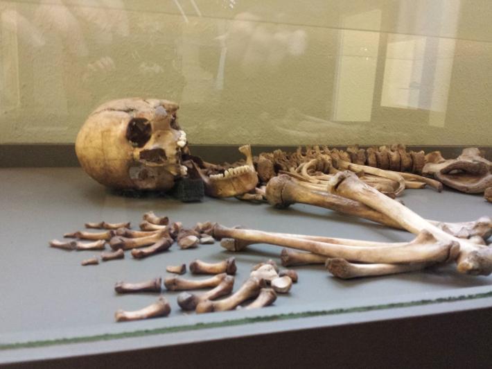 Pendant ce temps, au rez-de-chaussée, rayon archéologie... on s'ennuie à mourir ^^