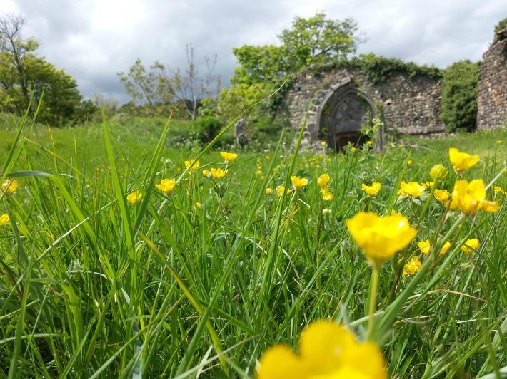 ruines-tournoel