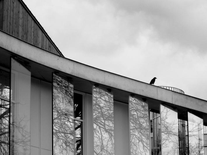 Le corbeau - Ghislaine Borie