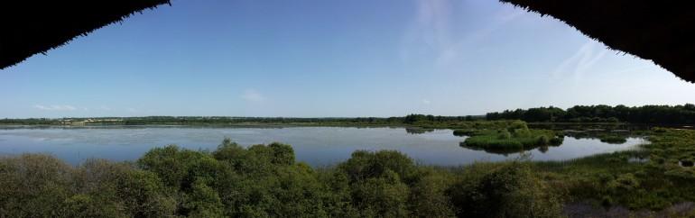 L'étang vu du Grand Affût