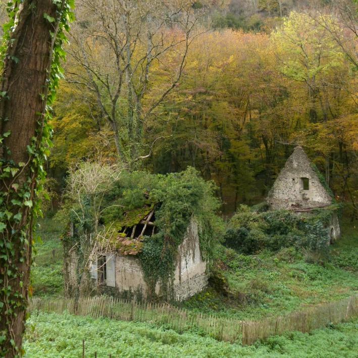 moulin_abbaye