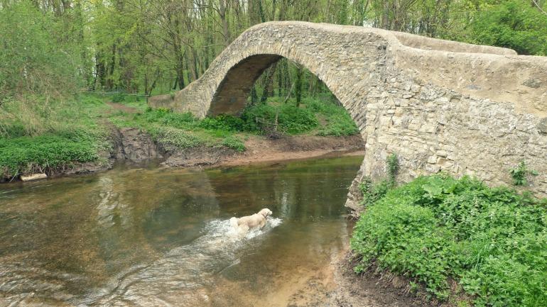 bougne_pont_2