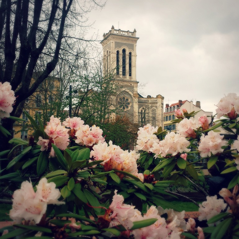 cathedrale_stetienne