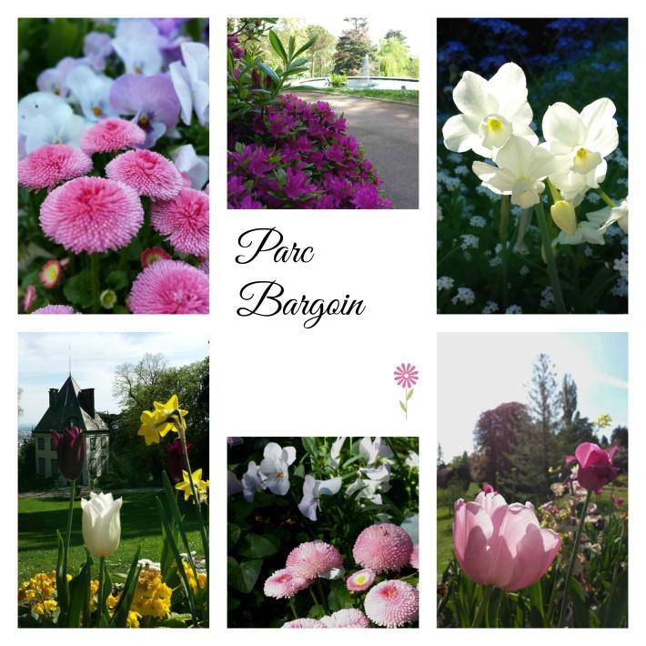 fleurs_bargoin