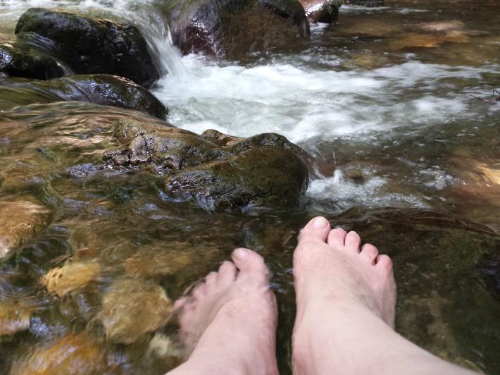pied_eau