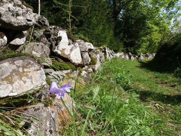 chemin_pierres