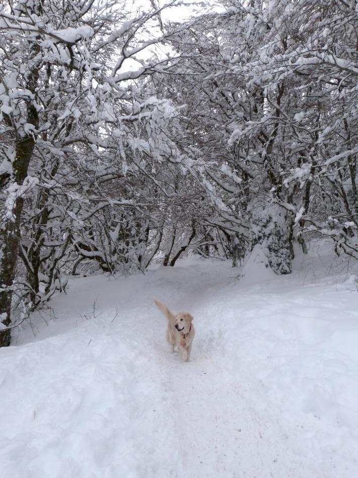 bougne_neige_2