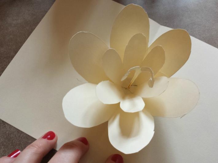 popup_fleur_2