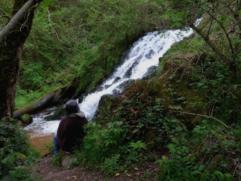cascade_ecureuil