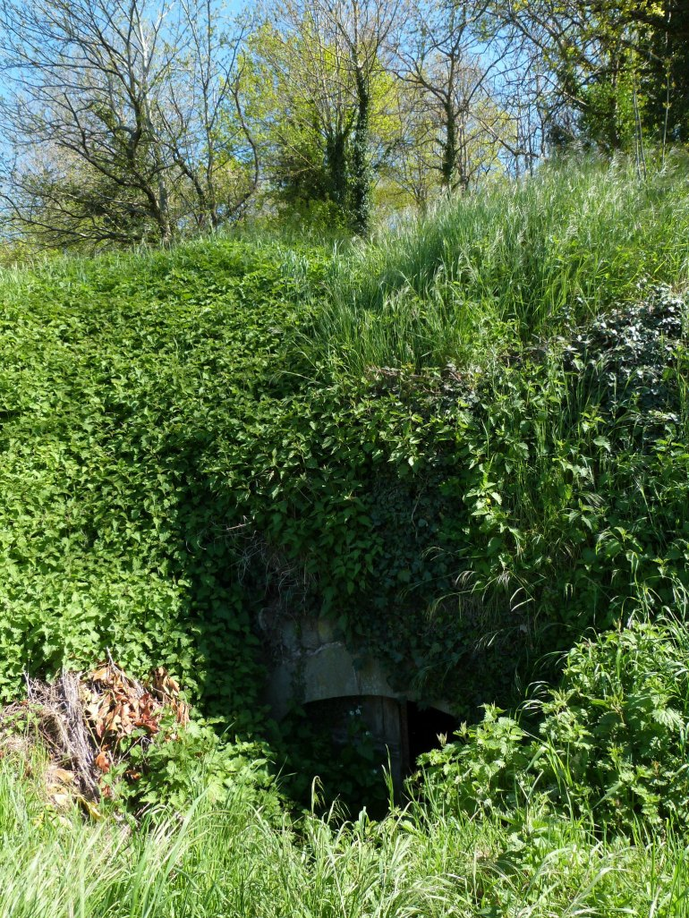 caves_st_julien_2