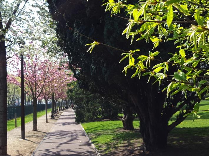 printemps8