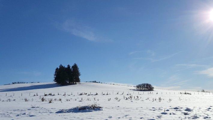 pulv_hiver5