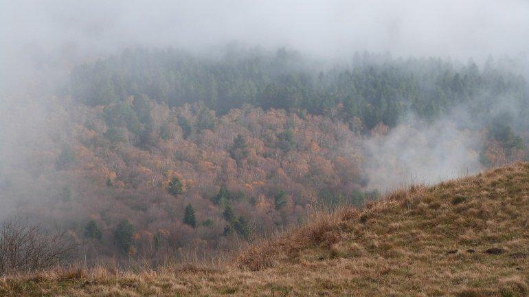brouillard4