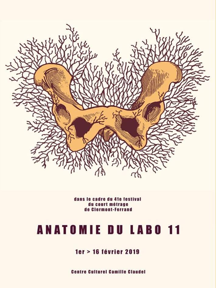 anatomie-du-labo-11-1