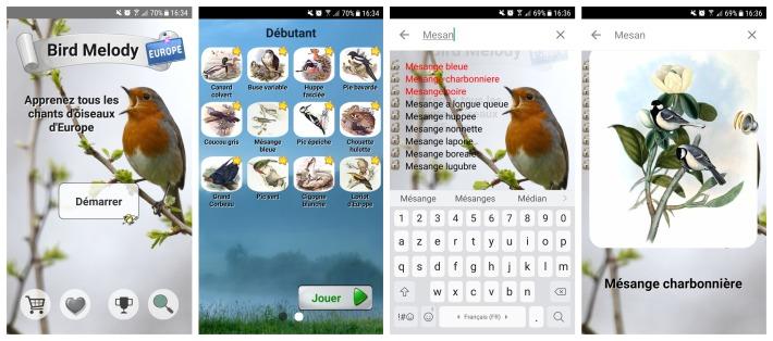 birdmelody